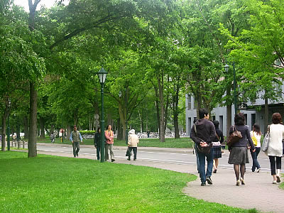 北海道大学|北大|メインストリート