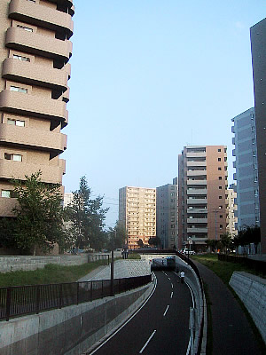 東札幌|白石サイクリングロード|写真