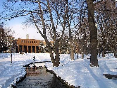 北海道大学|中央ローン|写真