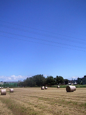 北海道|札幌|牧草ロール