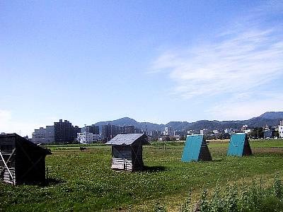 北海道大学|平成ポプラ並木