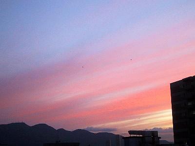 札幌|夕方|空