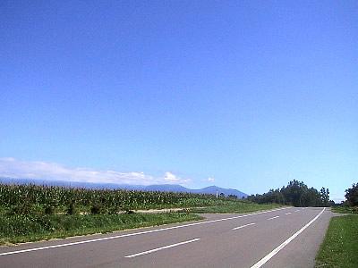 美瑛|新栄の丘|自転車