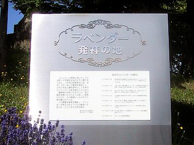 札幌|南沢|ラベンダー発祥の地