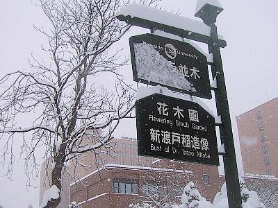北海道大学|新渡戸稲造像|写真