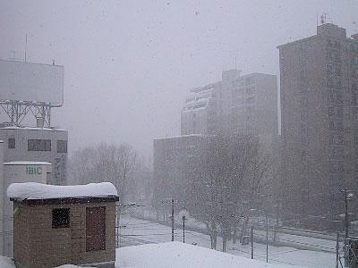 札幌|雪|写真