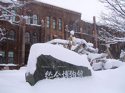 北海道大学|理学部|写真