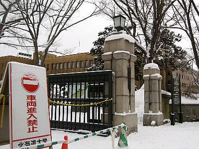 北海道大学正門|写真